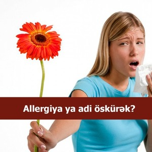 Allergiya ya adi öskürək?