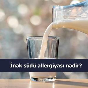 İnək südü allergiyası nədir?